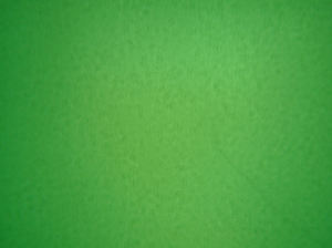 tela verde background1