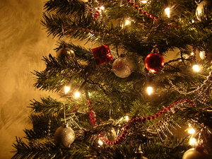 Graham's Christmas Tree 1
